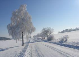 U_obce_Ok__e__ice_Jarom__r_Novotn__-366-280-200-80-c.jpg